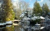 Inverno, 7 piccoli consigli per il tuo giardino.