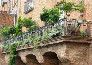 Beautiful Piante Da Terrazza Ideas - Design and Ideas ...