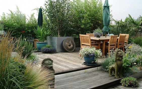 Piante da terrazzo giardinaggio magazine la rivista - Piante sempreverdi per terrazzi ...
