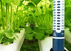 Il piaccametro, un valido alleato per la coltivazione della cannabis light