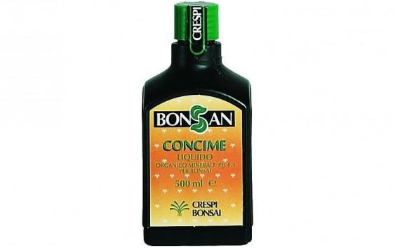 Bonsan, cura del bonsai