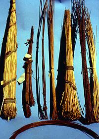 potatura-fascine-salice