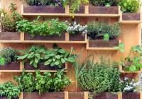 Come fare l'orto sul balcone e cosa coltivarci